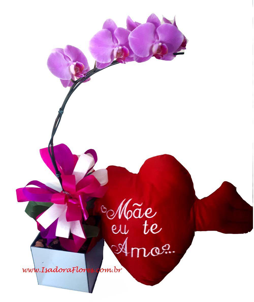 1211 Orquídea + Coração Mãe
