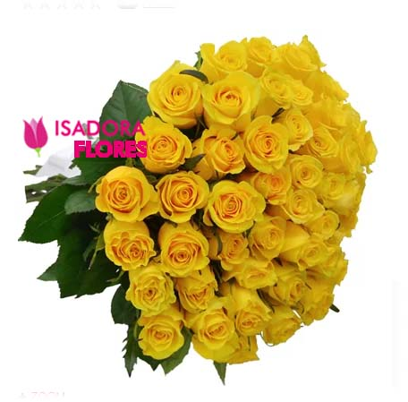 3082 50 Rosas Amarelas