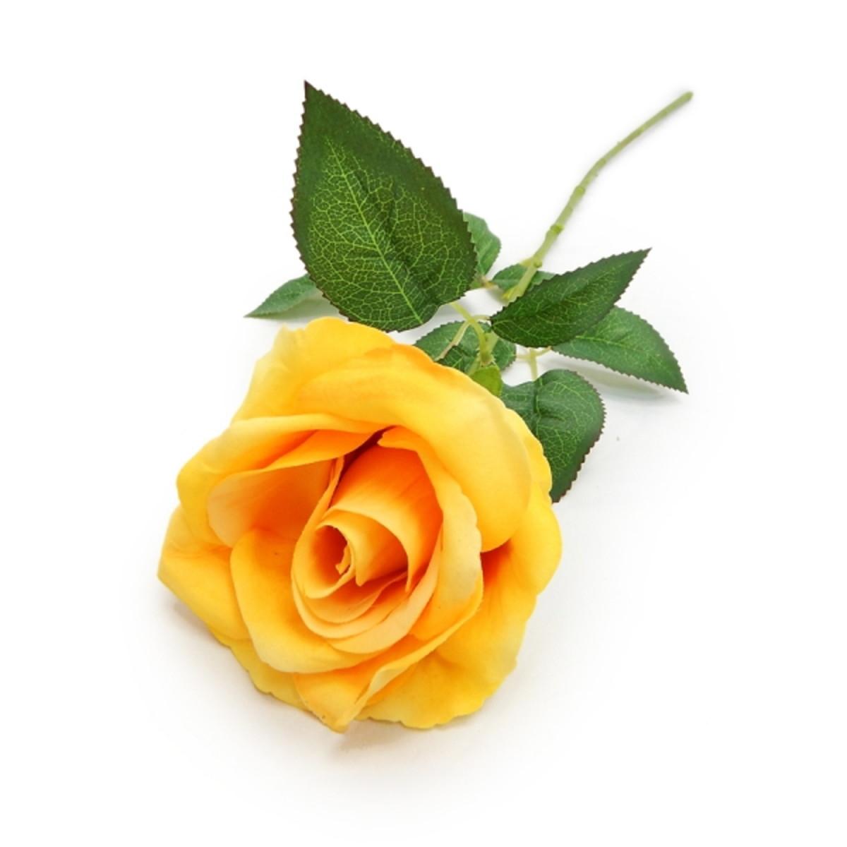 3091 Rosa unitária