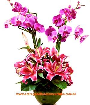 3097 Sublime - Orquídeas e Lírios