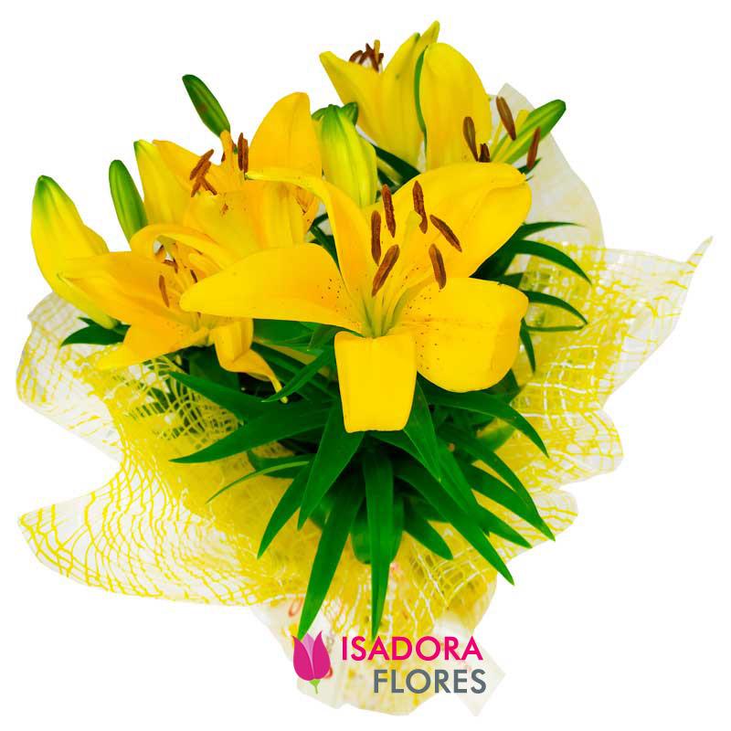 3294 Vaso de lírio amarelo plantado em cachepô