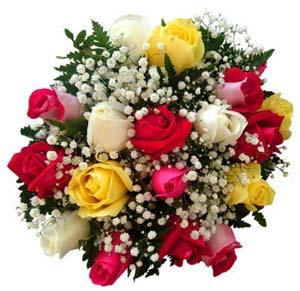 3510 Buquê com Rosas Coloridas