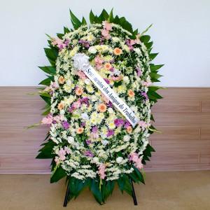 3970 Coroa de Flores Beta