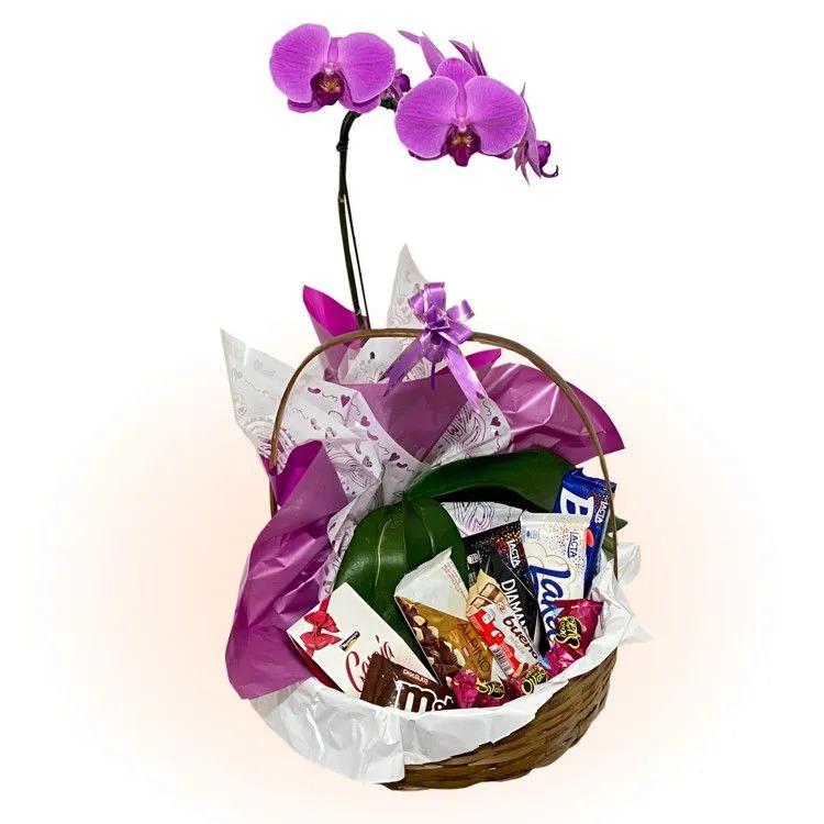 4018 Cesta Adorável com Orquídea e Chocolates