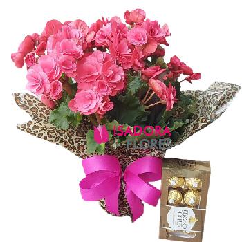 4892 Vaso de Flores
